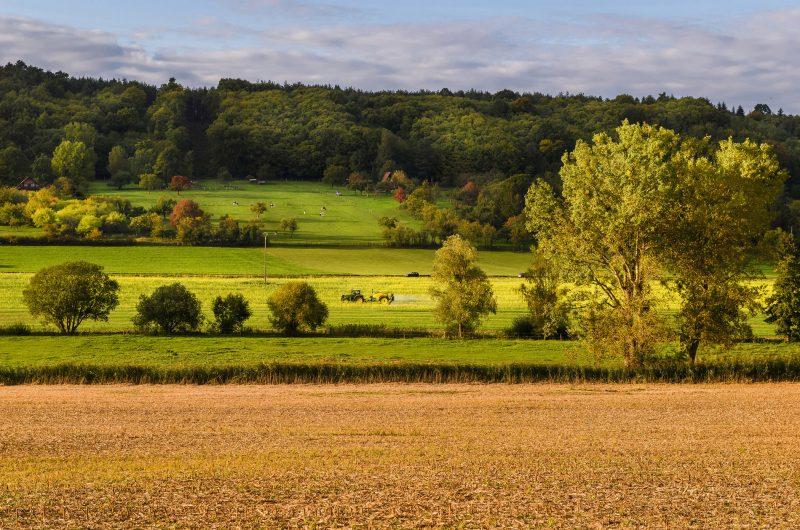 Pays de Hanau