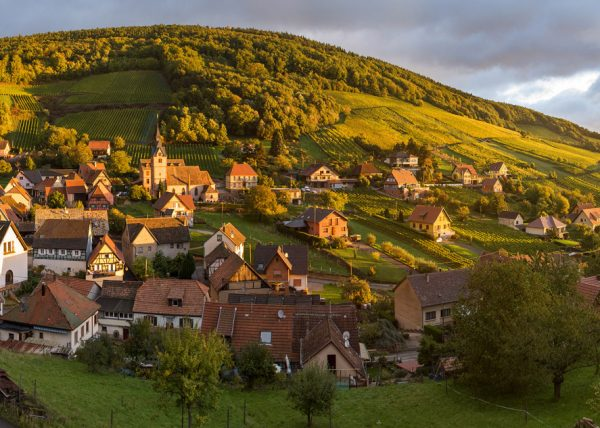 Reichsfeld