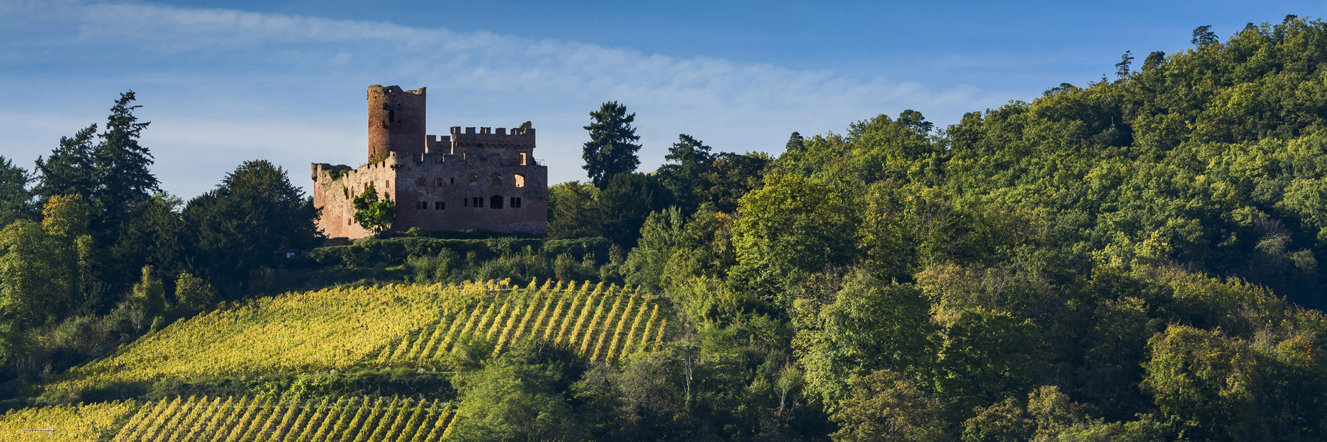 Château de Kientzheim