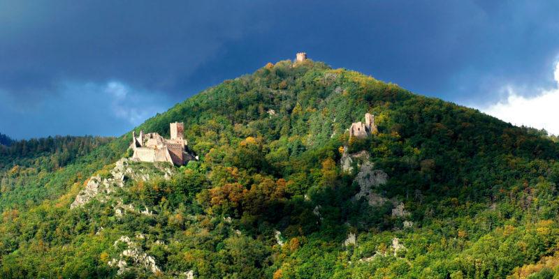 Château de Ribeauvillé