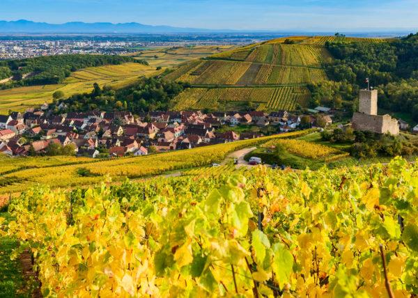 Katzentahl & Château du Wineck